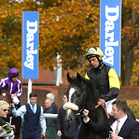 Newmarket 14th October