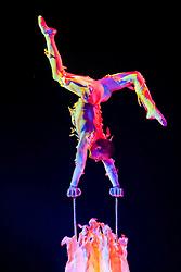 17.01.2011, Frankenstolz-Arena, Aschaffenburg, GER, TUI Feuerwerk der Turnkunst 2011, im Bild Yuriy Ovsyannikov. Von 1995 bis 1999 war der 29 jaehrige Ukrainer mehrfach Welt- und Europameister in der Sportakrobatik. Im Jahr 2000 schloss er sich der Akrobatikgruppe SEA WORLD an, die bei der ATEMLOS Tournee 2002 ??? damals noch unter dem Namen WATERWORLD ??? auch das Feuerwerk der Turnkunst Publikum begeisterte. Seine neue und erstmals in Deutschland zu bewundernde Handstand Darbietung FLAME kommt daher wie ein flammender Traum, ein schwereloser Tanz auf dem Vulkan, anmutig und bet^rend zugleich, EXPA Pictures © 2011, PhotoCredit: EXPA/ nph/  Roth       ****** out of GER / SWE / CRO ******