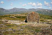 Kvernsteinsdriften var storindustri i Selbu før i tiden. Fra Høgfjellet, Skarvene og Roltdalen nasjonalpark. Skarvene med Storskarven (Tjohkele) i bakgrunnen. Foto: Bente Haarstad