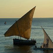 ZANZIBAR UNGUNJA, la  perle de l'océan indien