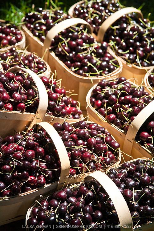 Sweet cherries at a farmers market.