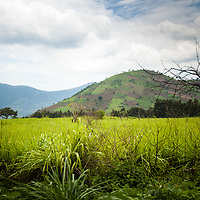 Farms, like patches on a quilt, cover a hill near Antigua, Guatemala.  © John McBrayer