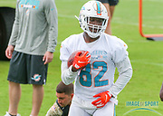 Miami Dolphins wide receiver Preston Williams(82) during Minicamp at the Baptist Health Training Facility at Nova Southeastern University, Wednesday, June 5, 2019 in Davie, Fla. (Kim Hukari/Image of Sport)