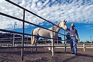 Lifestyle image of a rancher tending to his horse in San Diego, CA.