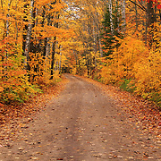 &quot;Magical Autumn Mystery&quot; 2<br />