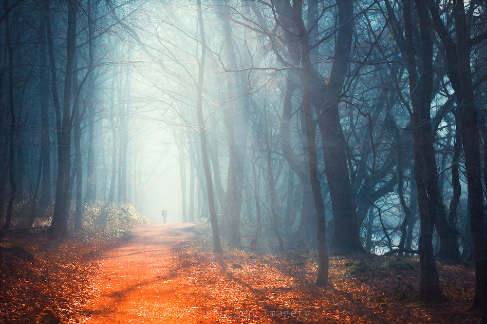 Man walking through a hazy forest in the morning light.