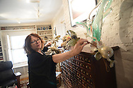 Denise Held of Doylestown, Pennsylvania lays out the decorations for a home on Ashland Street Friday November 20, 2015 in Doylestown, Pennsylvania.  (Photo by William Thomas Cain)