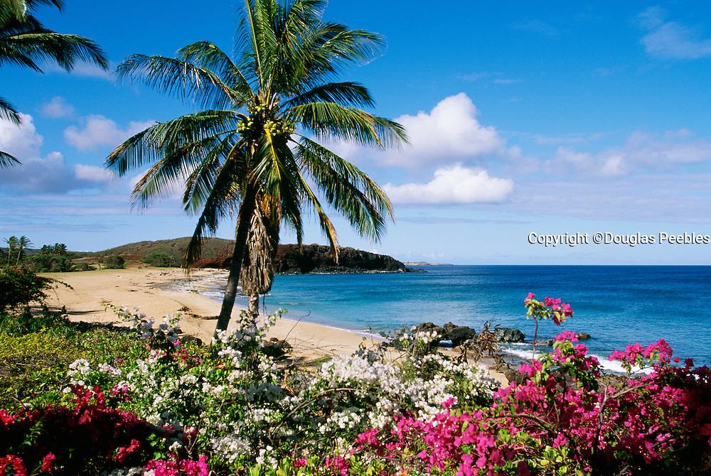 Kepuhi Beach, Kaluakoi, Molokai, Hawaii.