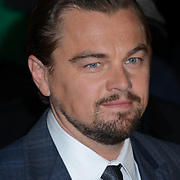 Le scandale Volkswagen port&eacute; au cin&eacute;ma par DiCaprio<br />