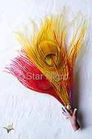 """Pearl in Hand Photo Jewelry Fascinator/Accessory handmade with love by Star Nigro.<br /> <br /> This can be worn as a hairpiece/ accessory that can also be clipped  to a blouse,pocket book,hat etc. <br /> <br /> Materials: hand photo,red & yellow colored peacock feathers,fresh water pearl,barrette clip<br /> <br /> size: 4 1/2"""" x 1/8"""" x 2""""<br /> <br /> price: $52.00<br /> <br /> <br /> + Giveback<br /> When you make a purchase from this site 7%  will be shared with a non-profit that focuses on making a positive difference in the world today.<br /> <br /> Buying art  + Making a difference = Art with Heart<br /> <br /> <br /> <br /> <br /> ©2019 All artwork is the property of STAR NIGRO.  Reproduction is strictly prohibited."""