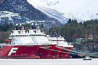 Far Searcher (t.v.), Far Serenade, Far Service og Far Server fra Farstad Shipping ligger i opplag i Ålesund under oljekrisen 2016.<br /> Foto: Svein Ove Ekornesvåg
