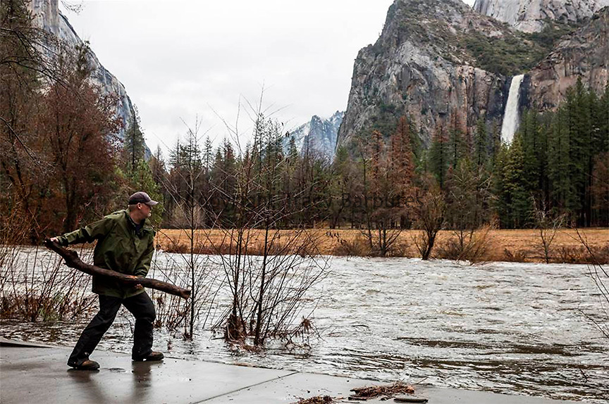 January 9, 2017 - Yosemite National Park, California, U.S - CHRIS LOWE , Yosemite National Park Valley Fire engineer, tosses a log into the Merced River at the Valley View parking area. The river crested overnight, leaving debris along roads and parking areas. Yosemite Valley is expected to reopen to visitors tomorrow morning at 8:00 a.m