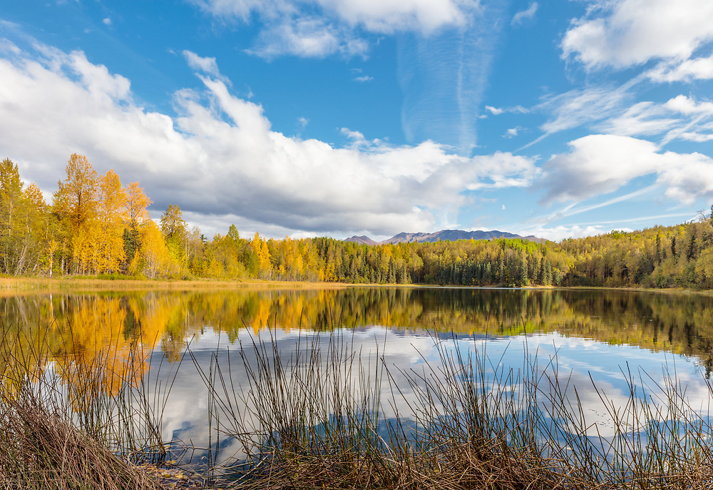 Autumn's colors reflected on Gwen Lake in Southcentral Alaska. Afternoon.