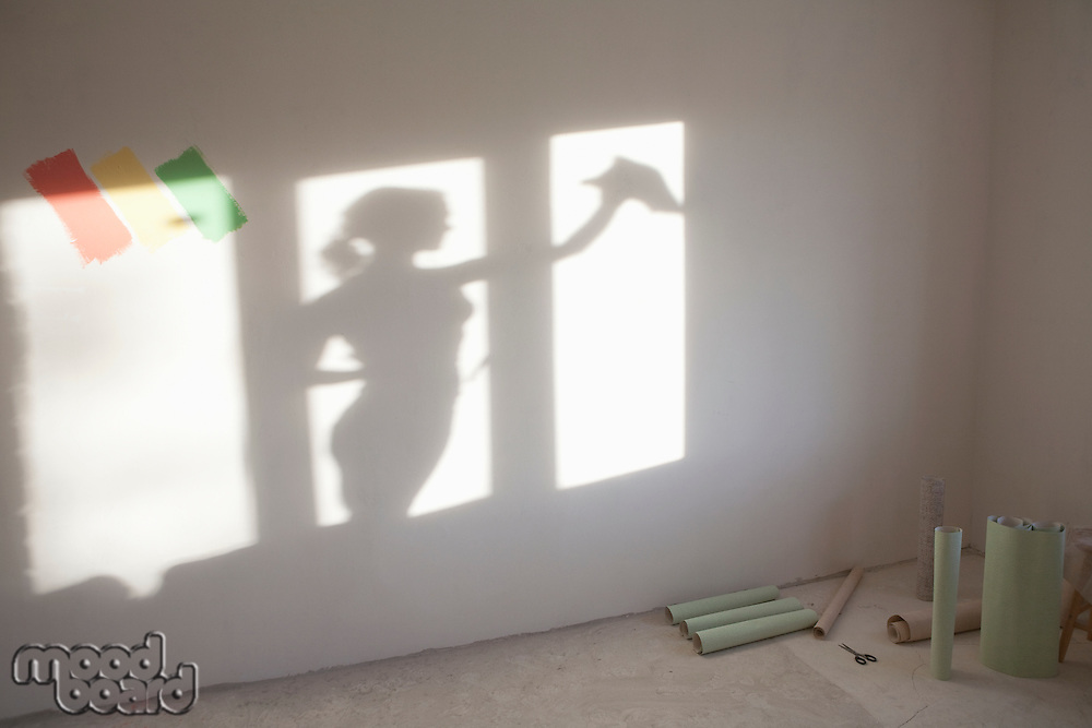 Shadow of woman cleaning windows in new apartment