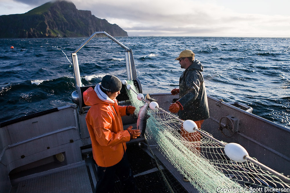 Salmon fishing near False Pass, Bering Sea, Alaska.