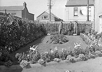 IND13<br />