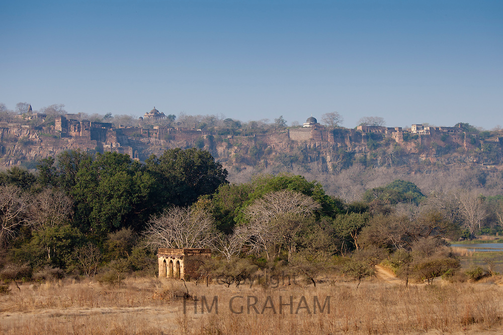 Maharaja of Jaipur's Hunting Lodge with Ranthambhore Fort behind in Ranthambhore National Park, Rajasthan, Northern India