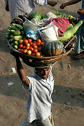 BANGLADESH DHAKA KAWRAN BAZAAR 2MARB05 -  Hawkers with their basket with fruits and vegetables at Kawran Bazaar vegetable market. They usually buy an assortment of foodstuffs from the market in the morning, and then make their rounds through Dhaka selling the day's wares to individual households at the door for a modest profit. The Bazaar has been in the Tejgaon area for at least 30 years and is one of the largest markets in Dhaka city...jre/Photo by Jiri Rezac..© Jiri Rezac 2005..Contact: +44 (0) 7050 110 417.Mobile:  +44 (0) 7801 337 683.Office:  +44 (0) 20 8968 9635..Email:   jiri@jirirezac.com.Web:    www.jirirezac.com..© All images Jiri Rezac 2005- All rights reserved.