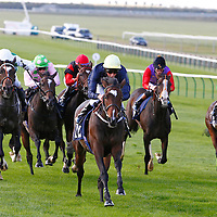 Gallipot and William Buick winning the 3.10 race