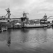 Docked fishing boats. Yaquina Bay. Newport, Oregon.
