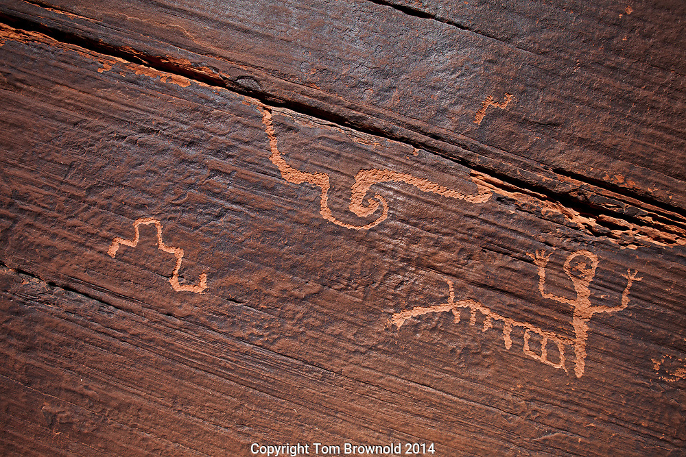 This panel is in the sandstone on the Sand Crack trail in the Vermillion Cliffs Wilderness. Personally I find it interesting because of the tilted landmass glyph in the left quadrent (tilts similarly as the monocline just west of this location)and shows a trench (Grand Canyon, perhaps) The two figurines which seem to me to represent some kind of spiritual maturity. The small one arm glyph before entering the crack and below the crack a bigger fellow (fully developed). The big long crack with the vortex (the vortex could be some shomanistic representation of a transformational journey) and the crack itself which could represent the Grand Canyon which is due south of this location. The panel is, for me, the simplest and most dynamic of  all representations of the human experience that I have seen in the four corners region.