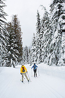 Two women cross country skiing down a groomed trail at Stevens Pass Nordic Center in the Central Washington Cascades...Model Releases:.20080120_MR_A.20080120_MR_B