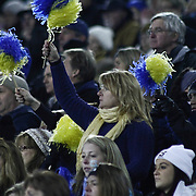 Salesianum fans cheer in the stands in the fourth quarter of the DIAA State Championship football game between Salesianum and Middletown Saturday, Nov. 30 2013, at Delaware Stadium in Newark Delaware.