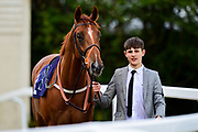 """Royal Ambition ridden by Hector Crouch and trained by Clive Cox in the Let's Play """"Four From The Top"""" / British Ebf Novice Median Auction Stakes race.  - Mandatory by-line: Ryan Hiscott/JMP - 01/05/2019 - HORSE RACING - Bath Racecourse - Bath, England - Wednesday 1 May 2019 Race Meeting"""