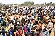 Africa, Ethiopia, Omo region, Chencha village, Dorze tribe market