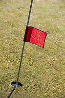 LOCHEM - repair pitchmarks. Lochemse golfclub de Graafschap in de winter. COPYRIGHT KOEN SUYK