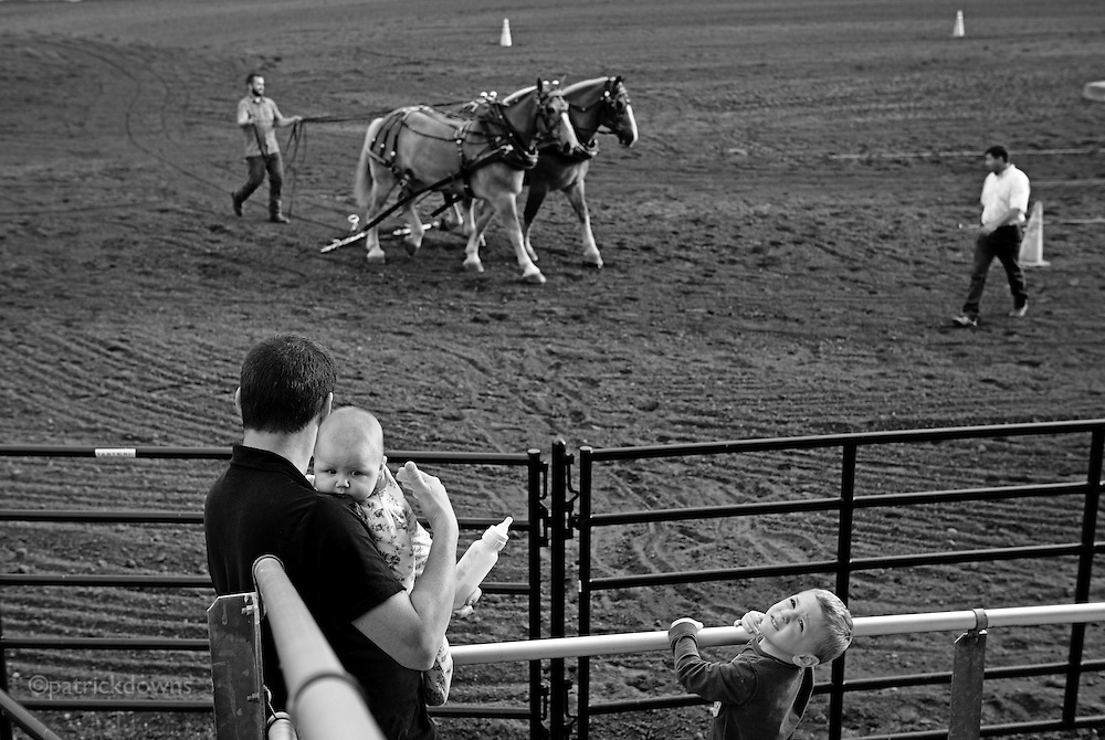 Past, present, future: Dad watches draft horses, son watches the plane over head, and baby watches ... something.