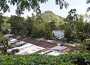 Tamil tea plantation worker housing, Ella, Badulla District, Uva Province, Sri Lanka, Asia vie to Little Adam's Peak