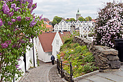 Houses and narrow streets in the old part of Stavanger Norway, locally known as 'Gamle Stavanger'. The 173 buildings date back to 1700- and 1800-century and compose the best preserved wooden buildings in northern Europe.