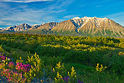 St. Elias Mountains<br /> ,  north of Haines Junction, Yukon, Canada