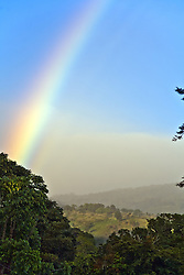 Alajuela Province:  Rainbow over the Central Highlands after an early morning rain.