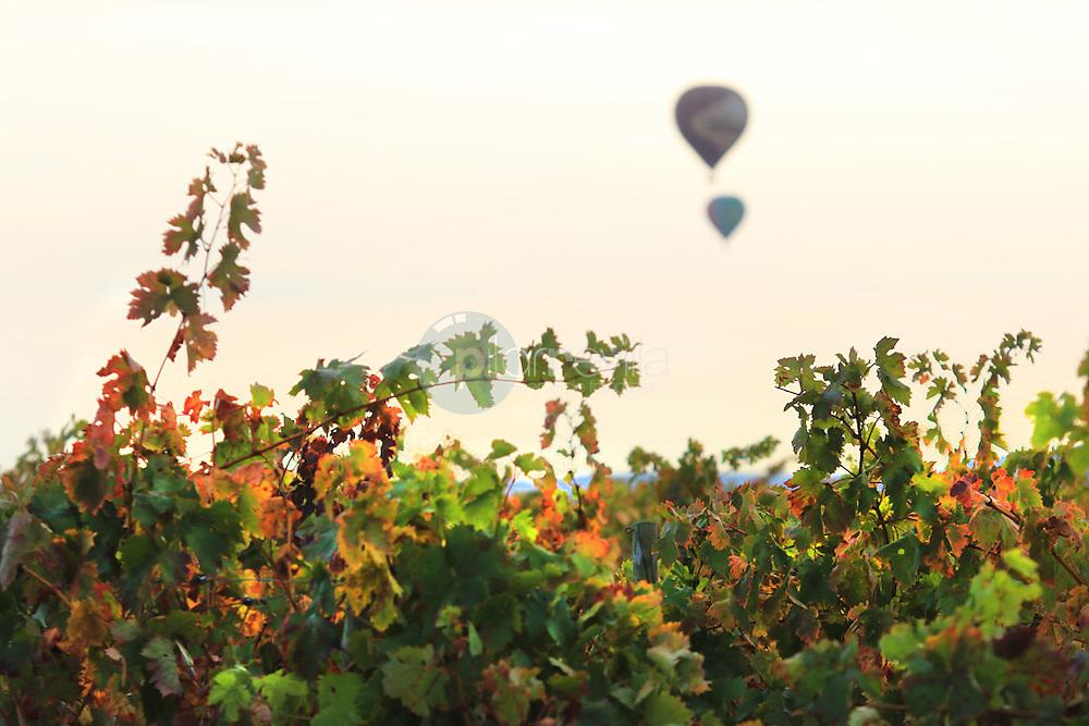 Globos en Sajazarra. La Rioja ©Daniel Acevedo / PILAR REVILLA