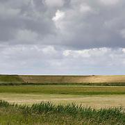 Nederland Walsoorden   gemeente Hulst  19 juni 2010 20100619       ..Serie landschappen provincie Zeeland. Zeeuws-Vlaanderen, landschap polderlandschap scenery met op de achtergrond de dijk van de westerschelde.   wisselvallig veranderlijk weer. Op de voorgrond een rietkraag, riet. Illustratief beeld  waterveiligheid, hollandse landschappen. , stilte, stock, stockbeeld, streek, sunny, sustainable, terrein, typerend, typical dutch landscape, typisch hollands, typisch hollands landschap, typische, uitgestrektheid, uitzicht, uniek, unieke, veiligheid, veld, vergezicht, vergezichten, verte, vrij, vrijheid weer, waaien, water level, waterbeheer, Waterbeheerplan, waterhuishouding, waterkering, waterkeringen, Waterkeringen, waterlevel, watermanagement, waterniveau, waterpeil, waterplan, waterproblematiek, waterstaatkundige, waterstand, watersysteem, waterveiligheid, waterveiligheid en gebiedsontwikkeling, waterwerken, weersomstandigheden, wei, weide, weidegang, weiland, weiland. Landscape, wijdheid, wijds, wijdsheid, wind, wit, witte, wolk, wolken, wolkenpartij, zeeland, zeeuws vlaanderen, zeeuws-vlaanderen, zeewering, zo vrij als een vogel, zonnig, zonnige dag, zware, zwitserleven gevoel ..Foto: David Rozing