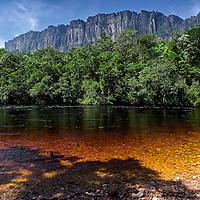 Vista del Auyantepui desde el rio Carrao. Edo. Bolivar. Venezuela. View of Auyantepui from Carro river. Edo. Bolivar. Febrero 28, 2013. Jimmy Villalta.