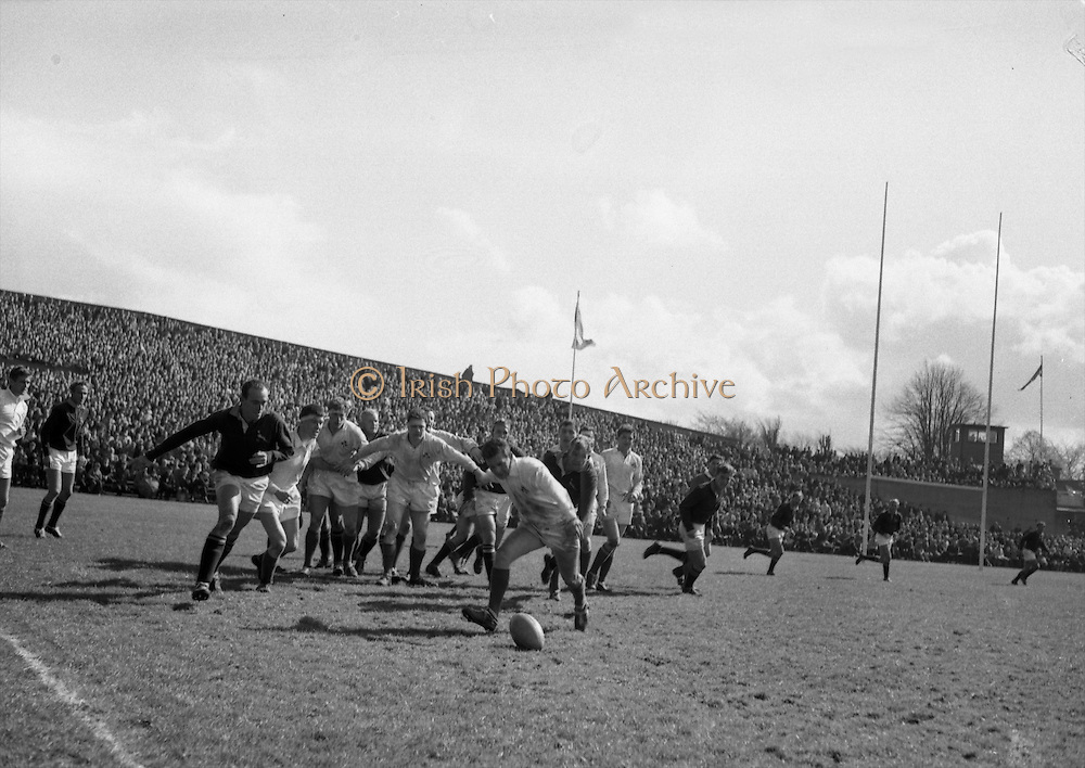 Irish forward, Kennedy, brings the ball away at his feet from line out, watched by Malan on left and Kuhn on right, .Irish players are McHale, McBride and McLoughlin,..Irish Rugby Football Union, Ireland v South Africa, Tour Match, Landsdowne Road, Dublin, Ireland, Saturday 10th April, 1965,.10.4.1965, 4.10.1965,..Referee- P G Brook, Rugby Football Union, ..Score- Ireland 9 - 6 South Africa, ..Irish Team, ..T J Kiernan,  Wearing number 15 Irish jersey, Full Back, Cork Constitution Rugby Football Club, Cork, Ireland,..P J McGrath,  Wearing number 14 Irish jersey, Right Wing, University college Cork Rugby Football Club, Cork, Ireland,  ..J C Walsh,  Wearing number 13 Irish jersey, Right Centre, University college Cork Rugby Football Club, Cork, Ireland,..M K Flynn, Wearing number 12 Irish jersey, Left Centre, Wanderers Rugby Football Club, Dublin, Ireland, ..K J Houston, Wearing number 11 Irish jersey, Left Wing, Bruff Rugby Football Club, Limerick, Ireland, and, Oxford University Rugby Footabll Club, Oxford, England, ..C M H Gibson, Wearing number 10 Irish jersey, Stand Off, Cambridge University Rugby Football Club, Cambridge, England, and, N.I.F.C, Rugby Football Club, Belfast, Northern Ireland,..R M Young, Wearing number 9 Irish jersey, Scrum Half, Queens University Rugby Football Club, Belfast, Northern Ireland,..S MacHale, Wearing number 1 Irish jersey, Forward, Landsdowne Rugby Football Club, Dublin, Ireland, ..K W Kennedy, Wearing number 2 Irish jersey, Forward, Queens University Rugby Football Club, Belfast, Northern Ireland,..R J McLoughlin, Wearing number 3 Irish jersey, Captain of the Irish team, Forward, Gosforth Rugby Football Club, Newcastle, England, ..W J McBride, Wearing number 4 Irish jersey, Forward, Ballymena Rugby Football Club, Antrim, Northern Ireland,..W A Mulcahy, Wearing number 5 Irish jersey, Forward, Bective Rangers Rugby Football Club, Dublin, Ireland,  ..M G Doyle, Wearing number 6 Irish jersey, Forward, University College Dublin Rugby Fo