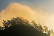 Cloud at sunrise over tree-lined hilltop near Chinese Camp in the Sierra foothills, Tuolumne County, California