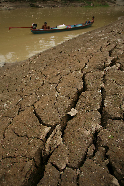 Documentation of a very bad drought on the Furo do Lago Cristo Reis (river of Cristo Reis lake) affluent of the Amazon river near Manaus. Millions of dead fish, a pink river dolphin (Boto). The Amazon basin is suffering a terrible drought in 2005...©Daniel Beltra/Greenpeace