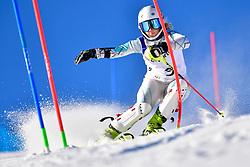 KUNKEL Ally, LW6/8-2, USA, Slalom at the WPAS_2019 Alpine Skiing World Cup, La Molina, Spain
