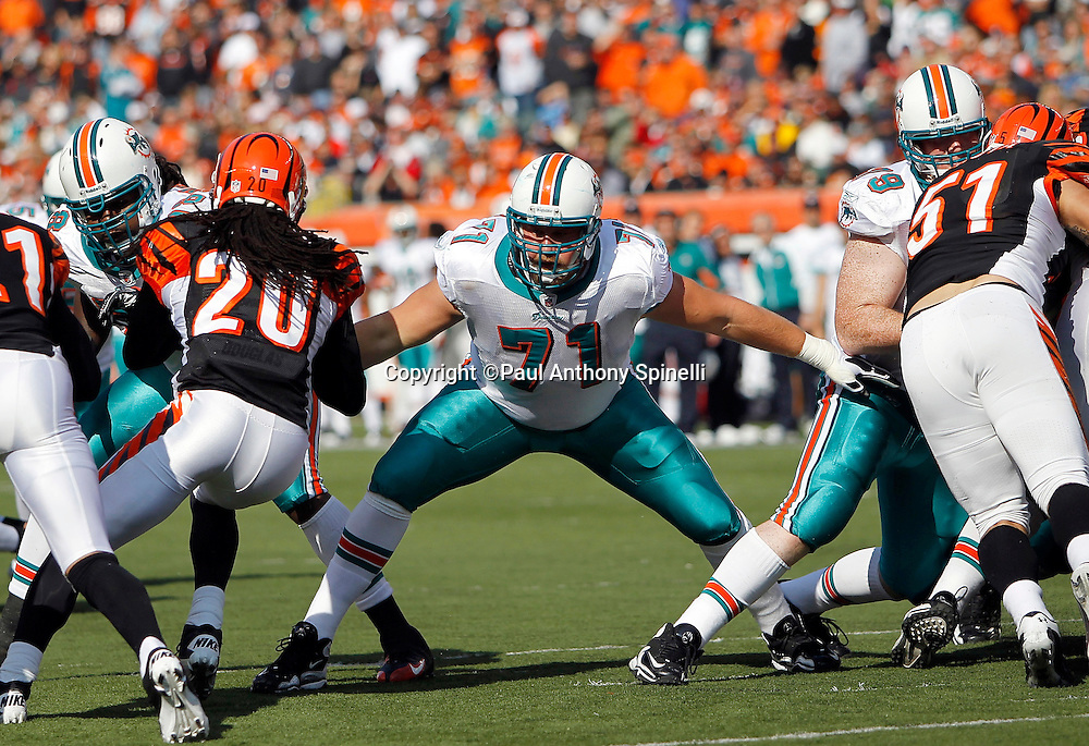 Miami Dolphins guard Cory Procter (71) blocks during the NFL week 8 football game against the Cincinnati Bengals on Sunday, October 31, 2010 in Cincinnati, Ohio. The Dolphins won the game 22-14. (©Paul Anthony Spinelli)