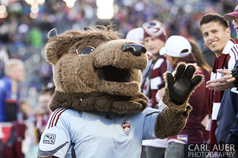 October 19th, 2013:  Marco Van Bison wanders around the stadium during the second half of the MLS Soccer Match between the Vancouver Whitecaps FC and the Colorado Rapids at Dick's Sporting Goods Park in Commerce City, Colorado