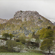snow fall in spring mountain scenery