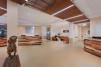 Rockville Maryland Veterinary Center Interior Image by Jeffrey Sauers of Commercial Photographics, Architectural Photo Artistry in Washington DC, Virginia to Florida and PA to New England