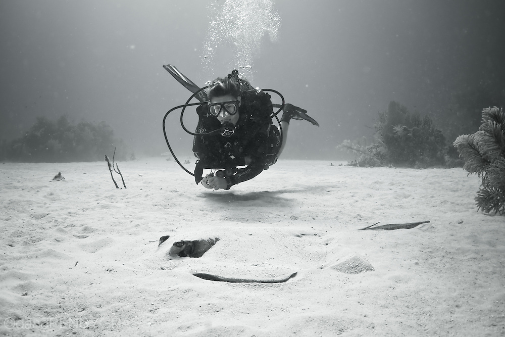 A female diver quietly observes a stingray buried in the sand.