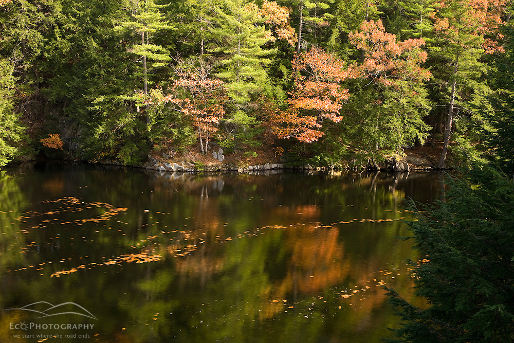 Fall colors reflect in the Saco River in Hollis, Maine.