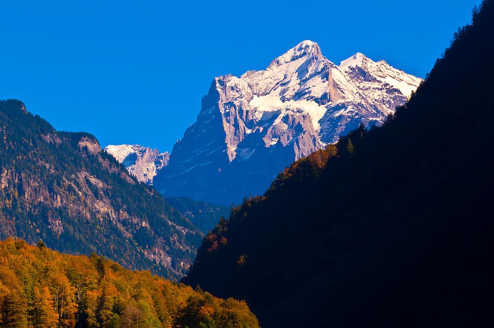 Schreckhorn above Grindelwald, Swiss Alps, Canton Bern, Switzerland