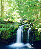 I took out my large format 4x5 view camera to photograph this vibrant lush green Whitehorse Waterfall in Oregon.  The various hues of green from the forest, ferns and moss and small bluish falls make for a cool photo.